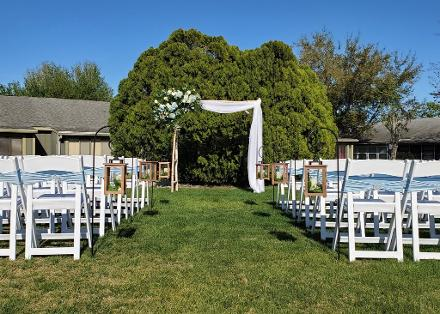 White Birch Wedding Arch